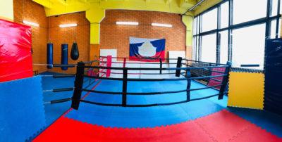 Boxing_ring_3